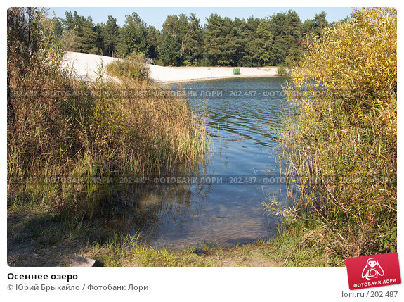 Осеннее озеро, фото № 202487, снято 24 сентября 2007 г. (c) Юрий Брыкайло / Фотобанк Лори