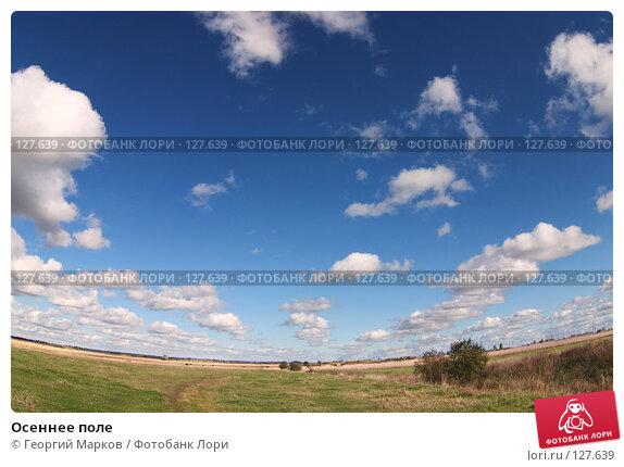 Осеннее поле, фото № 127639, снято 26 мая 2017 г. (c) Георгий Марков / Фотобанк Лори