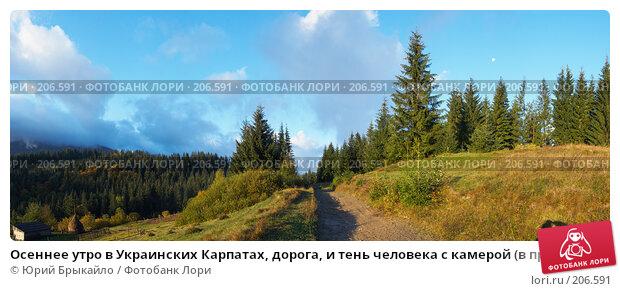 Осеннее утро в Украинских Карпатах, дорога, и тень человека с камерой (в правом нижнем углу), фото № 206591, снято 6 декабря 2016 г. (c) Юрий Брыкайло / Фотобанк Лори