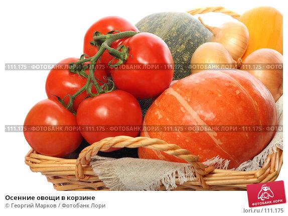 Осенние овощи в корзине, фото № 111175, снято 20 октября 2007 г. (c) Георгий Марков / Фотобанк Лори