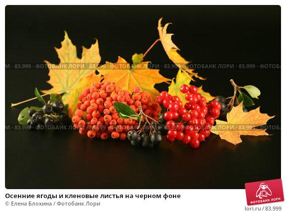 Осенние ягоды и кленовые листья на черном фоне, фото № 83999, снято 13 сентября 2007 г. (c) Елена Блохина / Фотобанк Лори