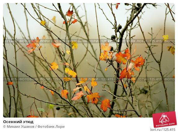 Осенний этюд, фото № 125415, снято 23 октября 2007 г. (c) Михаил Ушаков / Фотобанк Лори