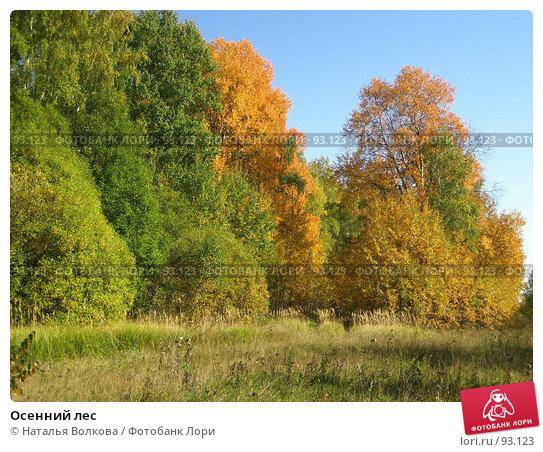 Осенний лес, эксклюзивное фото № 93123, снято 30 сентября 2007 г. (c) Наталья Волкова / Фотобанк Лори