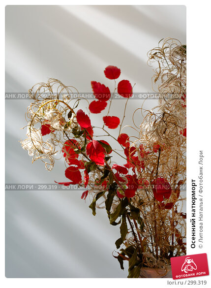 Осенний натюрморт, фото № 299319, снято 19 сентября 2007 г. (c) Литова Наталья / Фотобанк Лори
