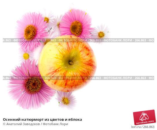 Осенний натюрморт из цветов и яблока, фото № 266863, снято 1 октября 2006 г. (c) Анатолий Заводсков / Фотобанк Лори