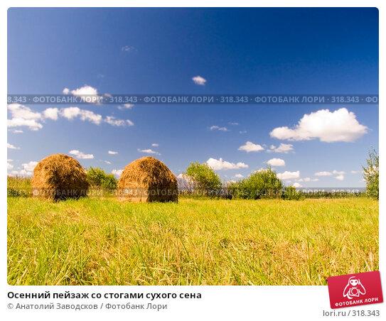 Осенний пейзаж со стогами сухого сена, фото № 318343, снято 6 августа 2006 г. (c) Анатолий Заводсков / Фотобанк Лори