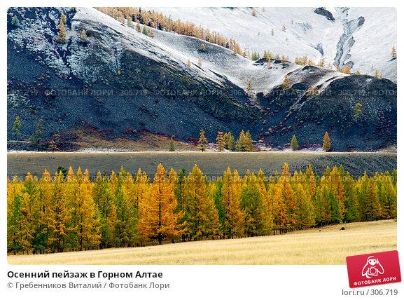 Осенний пейзаж в Горном Алтае, фото № 306719, снято 29 апреля 2017 г. (c) Гребенников Виталий / Фотобанк Лори