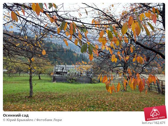 Осенний сад, фото № 162671, снято 3 октября 2007 г. (c) Юрий Брыкайло / Фотобанк Лори