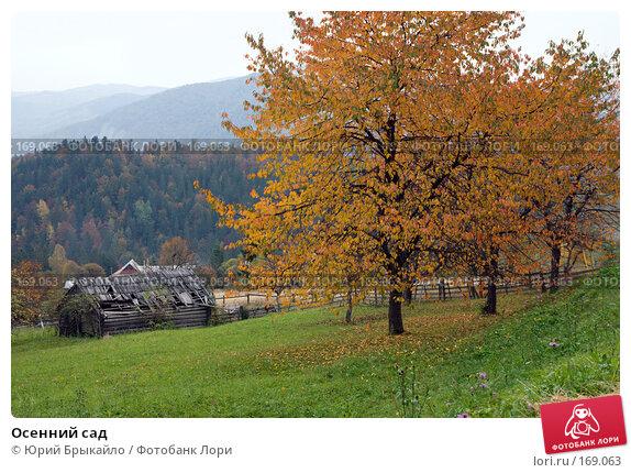 Осенний сад, фото № 169063, снято 3 октября 2007 г. (c) Юрий Брыкайло / Фотобанк Лори