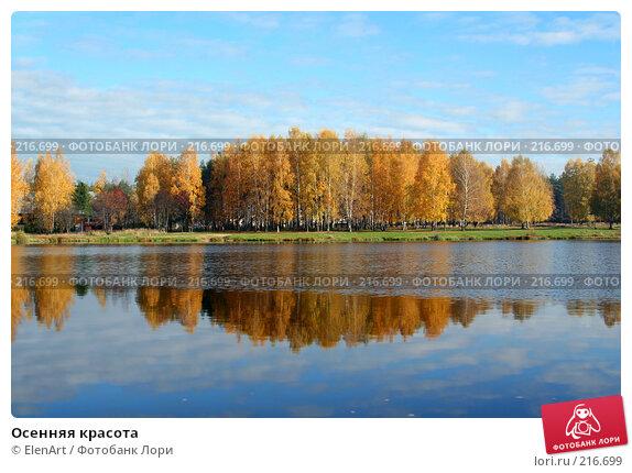 Купить «Осенняя красота», фото № 216699, снято 24 ноября 2017 г. (c) ElenArt / Фотобанк Лори