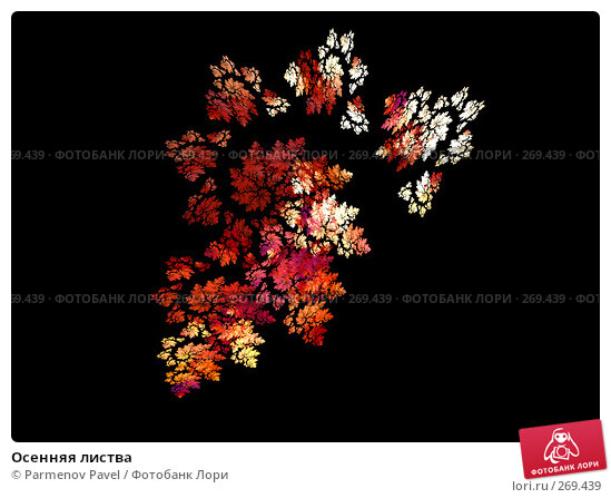 Осенняя листва, иллюстрация № 269439 (c) Parmenov Pavel / Фотобанк Лори