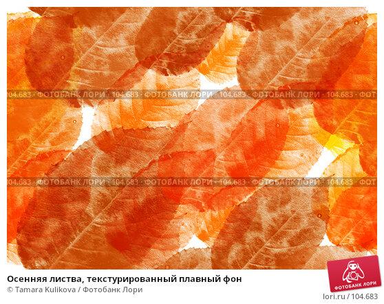 Купить «Осенняя листва, текстурированный плавный фон», фото № 104683, снято 26 апреля 2018 г. (c) Tamara Kulikova / Фотобанк Лори