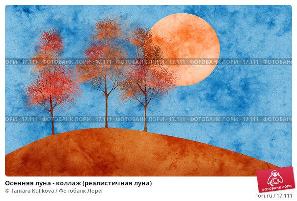 Осенняя луна - коллаж (реалистичная луна), иллюстрация № 17111 (c) Tamara Kulikova / Фотобанк Лори