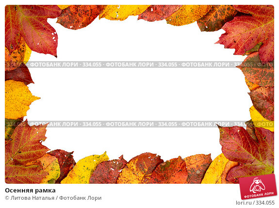 Осенняя рамка, фото № 334055, снято 3 октября 2007 г. (c) Литова Наталья / Фотобанк Лори