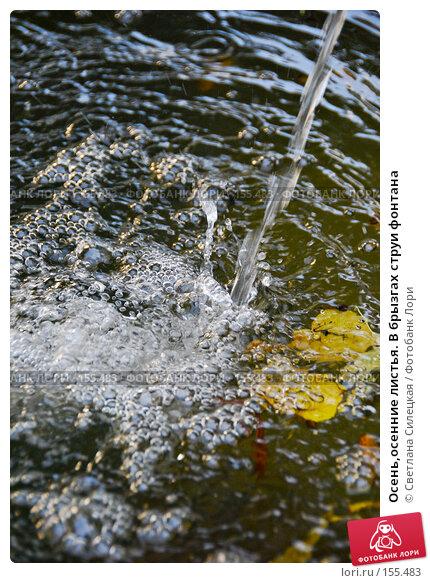 Осень,осенние листья. В брызгах струи фонтана, фото № 155483, снято 2 октября 2007 г. (c) Светлана Силецкая / Фотобанк Лори