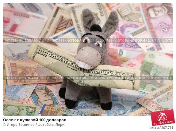 Ослик с купюрой 100 долларов, фото № 207711, снято 22 февраля 2008 г. (c) Игорь Веснинов / Фотобанк Лори