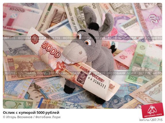 Купить «Ослик с купюрой 5000 рублей», фото № 207715, снято 22 февраля 2008 г. (c) Игорь Веснинов / Фотобанк Лори