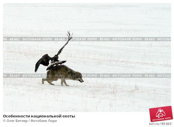Особенности национальной охоты, фото № 89663, снято 18 февраля 2006 г. (c) Олег Битнер / Фотобанк Лори