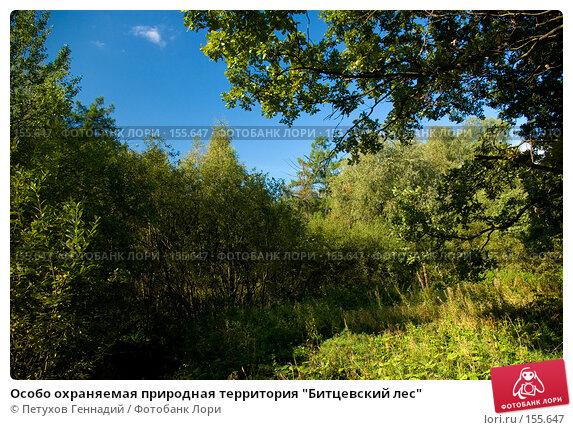 "Особо охраняемая природная территория ""Битцевский лес"", фото № 155647, снято 4 сентября 2007 г. (c) Петухов Геннадий / Фотобанк Лори"