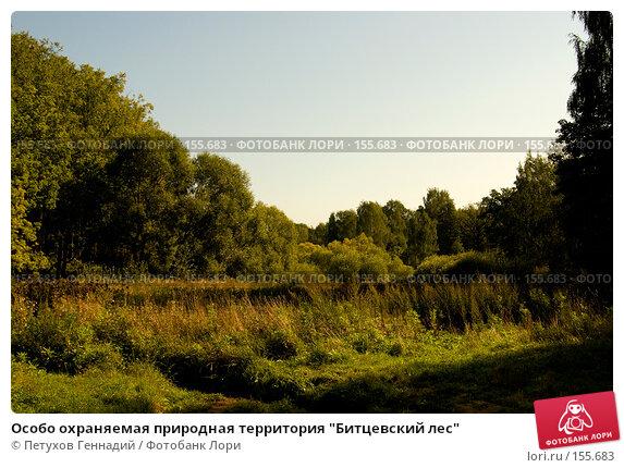 "Особо охраняемая природная территория ""Битцевский лес"", фото № 155683, снято 4 сентября 2007 г. (c) Петухов Геннадий / Фотобанк Лори"