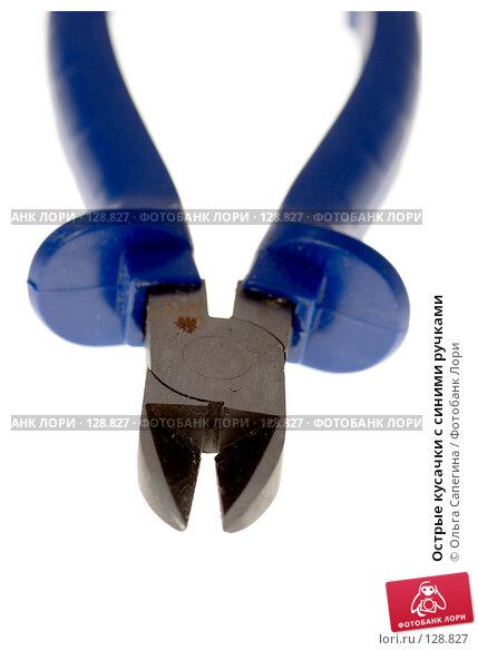 Острые кусачки с синими ручками, фото № 128827, снято 31 августа 2007 г. (c) Ольга Сапегина / Фотобанк Лори