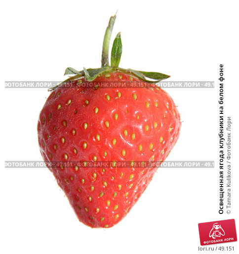 Купить «Освещенная ягода клубники на белом фоне», фото № 49151, снято 2 июня 2007 г. (c) Tamara Kulikova / Фотобанк Лори