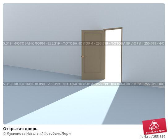 Открытая дверь, иллюстрация № 255319 (c) Лукиянова Наталья / Фотобанк Лори