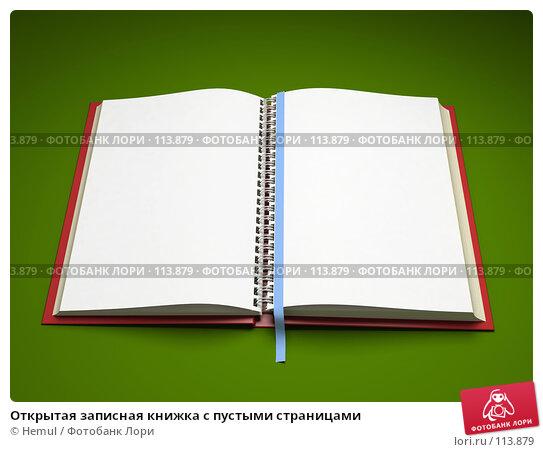 Открытая записная книжка с пустыми страницами, иллюстрация № 113879 (c) Hemul / Фотобанк Лори