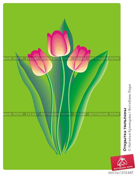 Купить «Открытка тюльпаны», иллюстрация № 213647 (c) Наталья Кузнецова / Фотобанк Лори