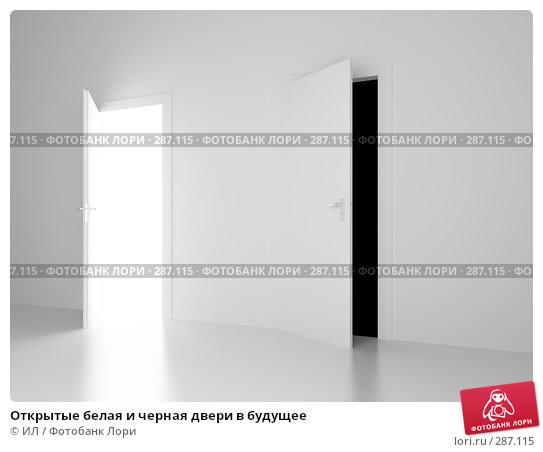 Купить «Открытые белая и черная двери в будущее», иллюстрация № 287115 (c) ИЛ / Фотобанк Лори