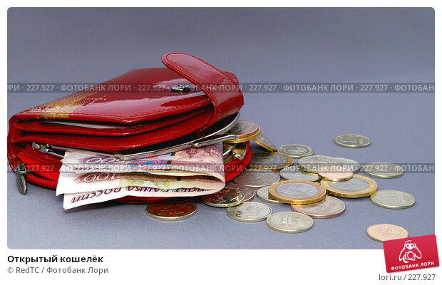 Открытый кошелёк, фото № 227927, снято 20 марта 2008 г. (c) RedTC / Фотобанк Лори