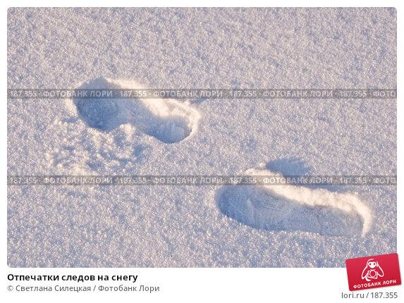Отпечатки следов на снегу, фото № 187355, снято 8 января 2008 г. (c) Светлана Силецкая / Фотобанк Лори