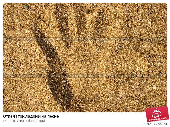 Отпечаток ладони на песке, фото № 258731, снято 21 апреля 2008 г. (c) RedTC / Фотобанк Лори