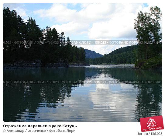 Отражение деревьев в реке Катунь, фото № 136023, снято 20 августа 2006 г. (c) Александр Литовченко / Фотобанк Лори