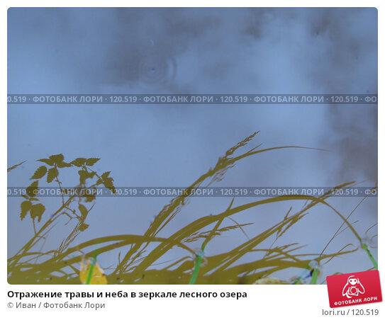 Отражение травы и неба в зеркале лесного озера, фото № 120519, снято 16 сентября 2007 г. (c) Иван / Фотобанк Лори