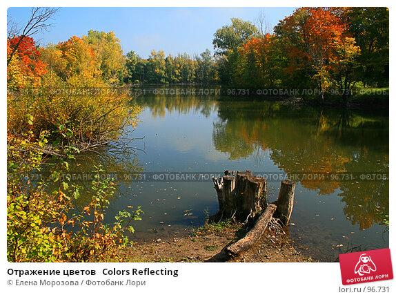Отражение цветов   Colors Reflecting, фото № 96731, снято 26 сентября 2007 г. (c) Елена Морозова / Фотобанк Лори