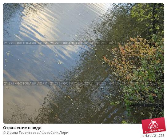 Отражение в воде, эксклюзивное фото № 21275, снято 28 октября 2004 г. (c) Ирина Терентьева / Фотобанк Лори