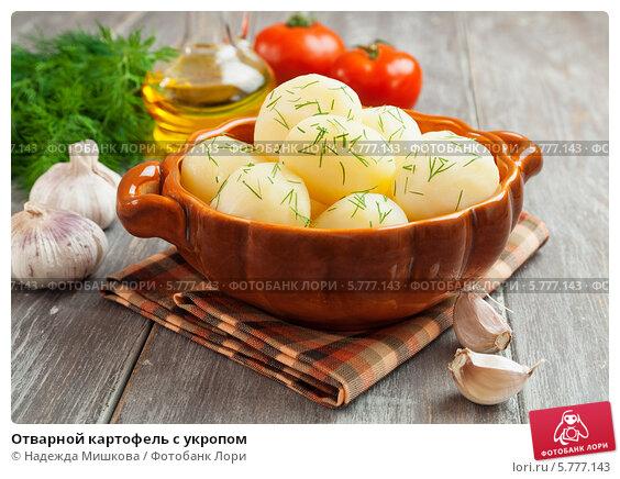 Купить «Отварной картофель с укропом», фото № 5777143, снято 5 апреля 2014 г. (c) Надежда Мишкова / Фотобанк Лори