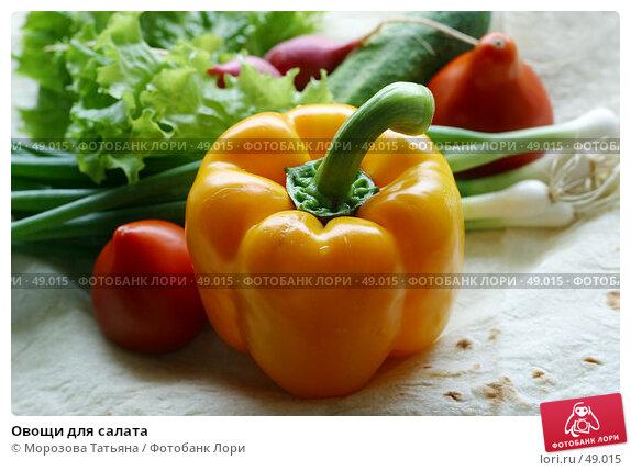 Купить «Овощи для салата», фото № 49015, снято 30 июня 2006 г. (c) Морозова Татьяна / Фотобанк Лори