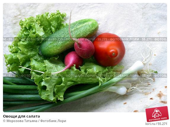 Купить «Овощи для салата», фото № 55271, снято 30 июня 2006 г. (c) Морозова Татьяна / Фотобанк Лори