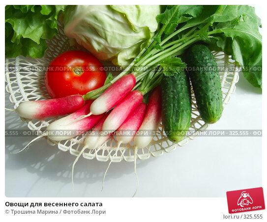 Овощи для весеннего салата, фото № 325555, снято 14 июня 2008 г. (c) Трошина Марина / Фотобанк Лори