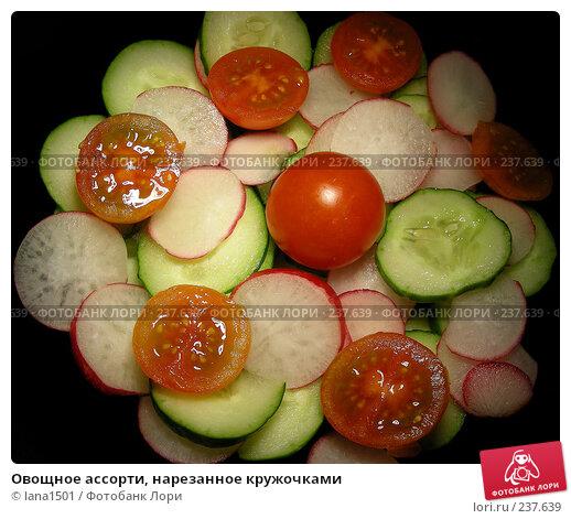 Овощное ассорти, нарезанное кружочками, эксклюзивное фото № 237639, снято 29 марта 2008 г. (c) lana1501 / Фотобанк Лори