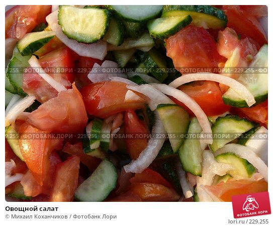 Овощной салат, фото № 229255, снято 5 августа 2007 г. (c) Михаил Коханчиков / Фотобанк Лори