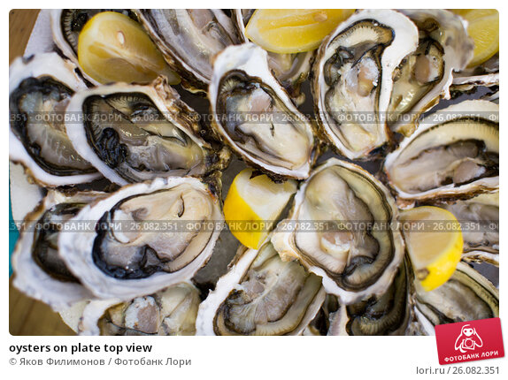Купить «oysters on plate top view», фото № 26082351, снято 19 октября 2018 г. (c) Яков Филимонов / Фотобанк Лори