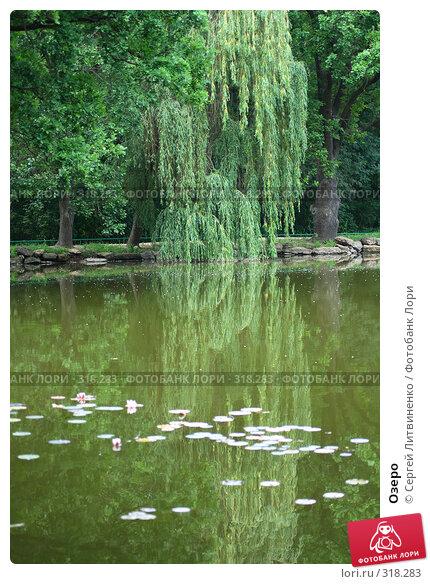 Озеро, фото № 318283, снято 8 июня 2008 г. (c) Сергей Литвиненко / Фотобанк Лори