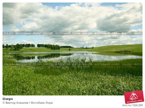 Купить «Озеро», фото № 324259, снято 13 июня 2008 г. (c) Виктор Ковалев / Фотобанк Лори