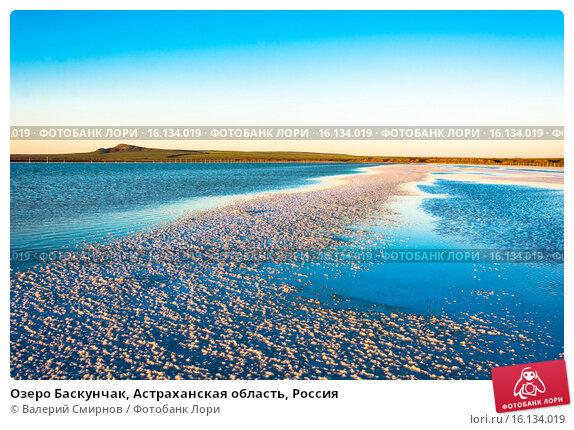 Купить «Озеро Баскунчак, Астраханская область, Россия», фото № 16134019, снято 9 июня 2015 г. (c) Валерий Смирнов / Фотобанк Лори