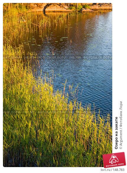 Озеро на закате, фото № 148783, снято 24 июня 2006 г. (c) Argument / Фотобанк Лори