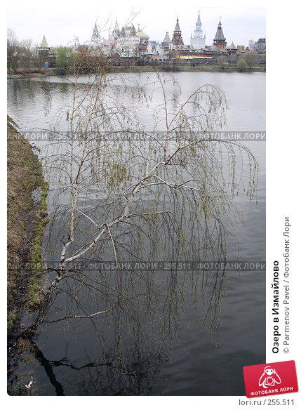 Озеро в Измайлово, фото № 255511, снято 16 апреля 2008 г. (c) Parmenov Pavel / Фотобанк Лори