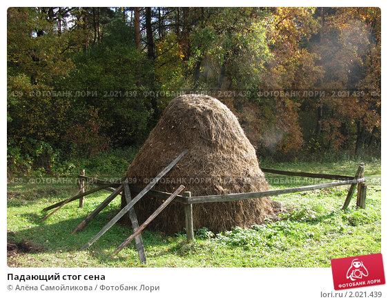 Падающий стог сена. Стоковое фото, фотограф Алёна Самойликова / Фотобанк Лори